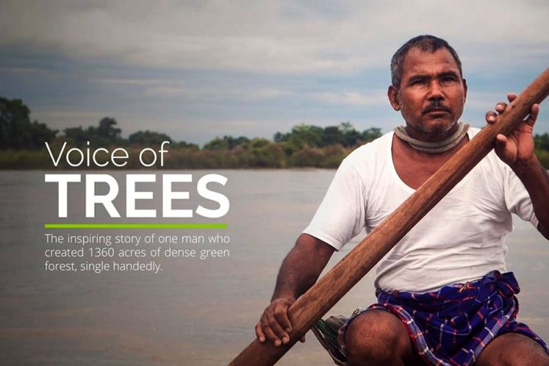 Voice of Trees: This man solely turned a barren island into a forest