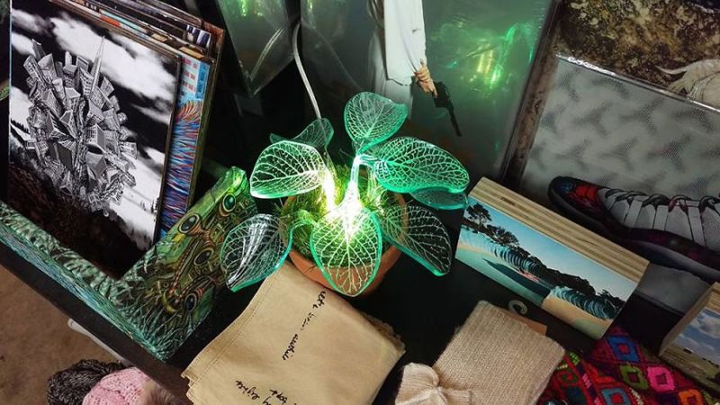 glow-in-the-dark plants-2