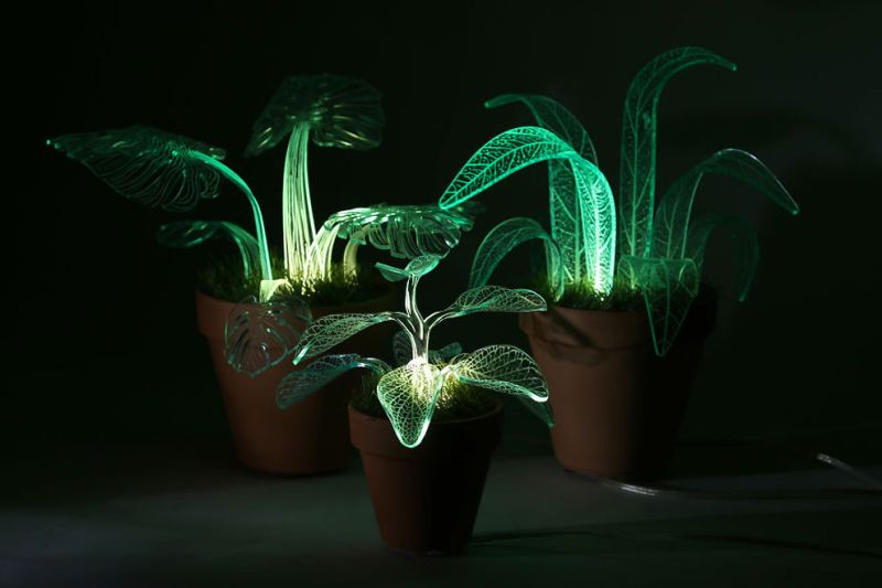 These glow-in-the-dark plants will abandon your love affair with night