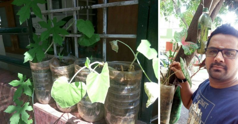 Bengaluru man builds vertical gardens using plastic bottles & coconut shells