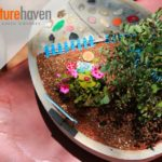 Miniature Haven helps you bring lush landscapes into your home