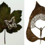 Leaf Art: Artist creates intriguing artwork on fallen leaves