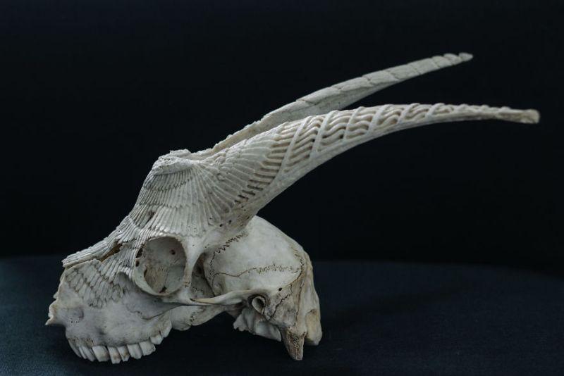 Victor Skull Art