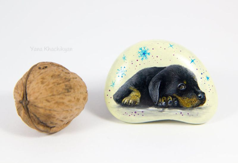 Stone Painting: Ukrainian Artist Paints Realistic Pet Portraits on Rocks