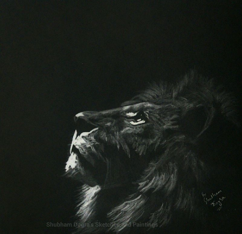Shubham Dogra sketches and paintings-5