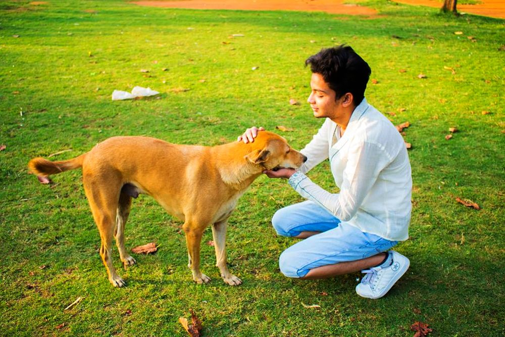 19-year-old guy provides abandoned animals home at 'A Place to Bark'