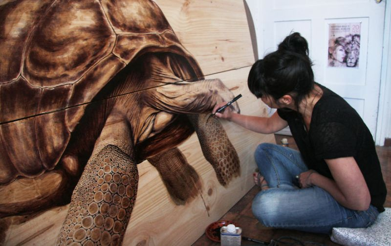 Beautiful nature-inspired drawings on recycled wood by Martina Billi